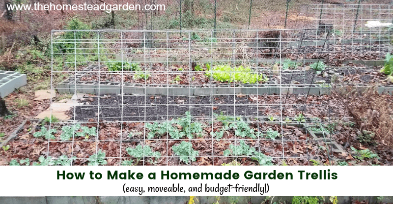 How to Make a Homemade Garden Trellis (easy, moveable, and budget-friendly)