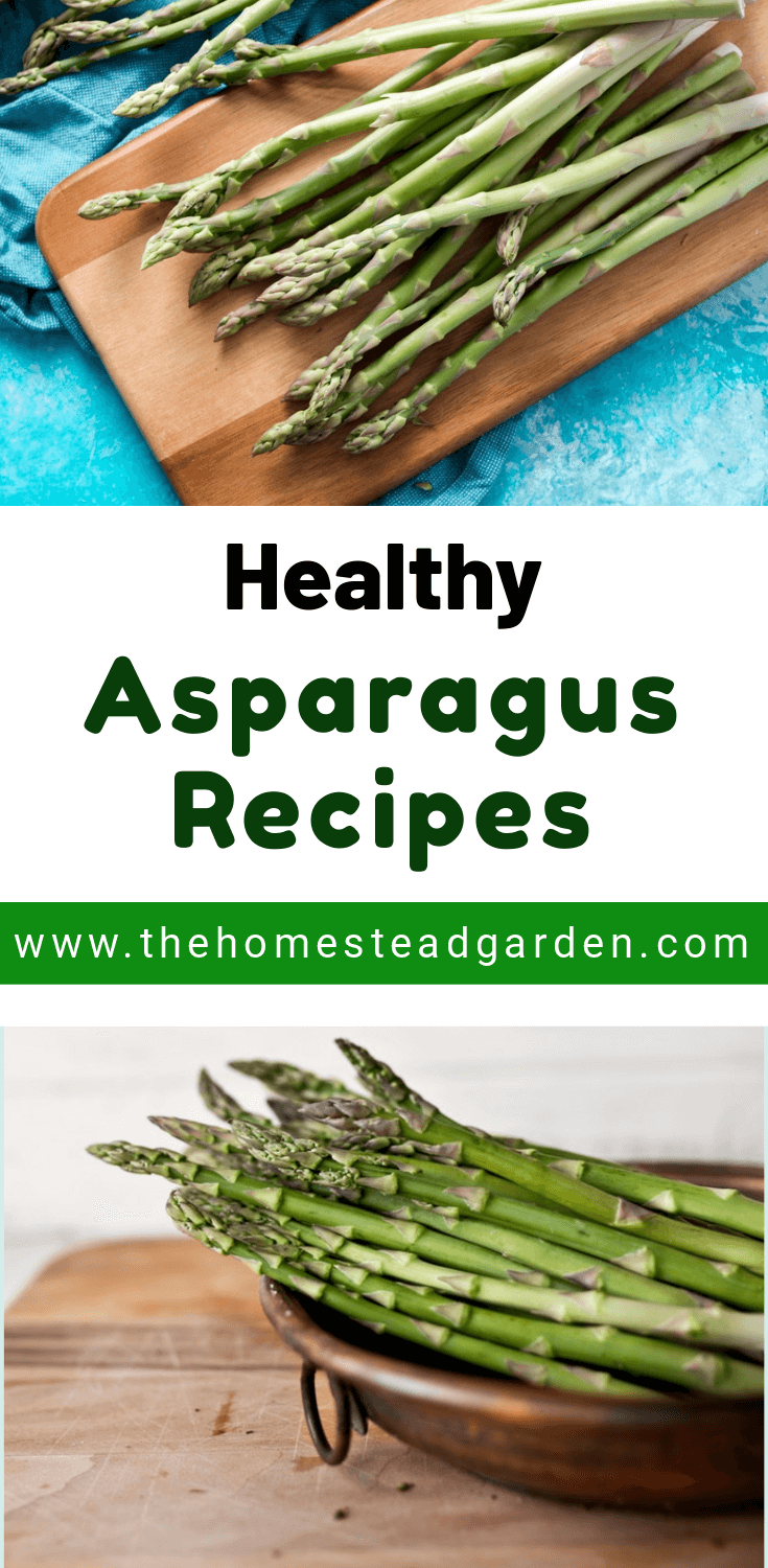 The Best Healthy Asparagus Recipes