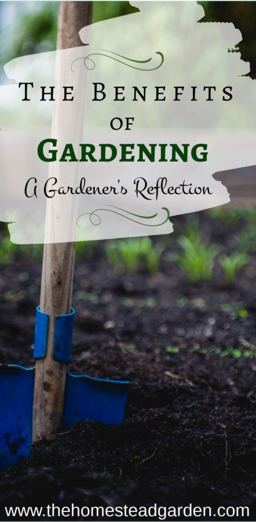 The Benefits of Gardening: A Gardener's Reflection