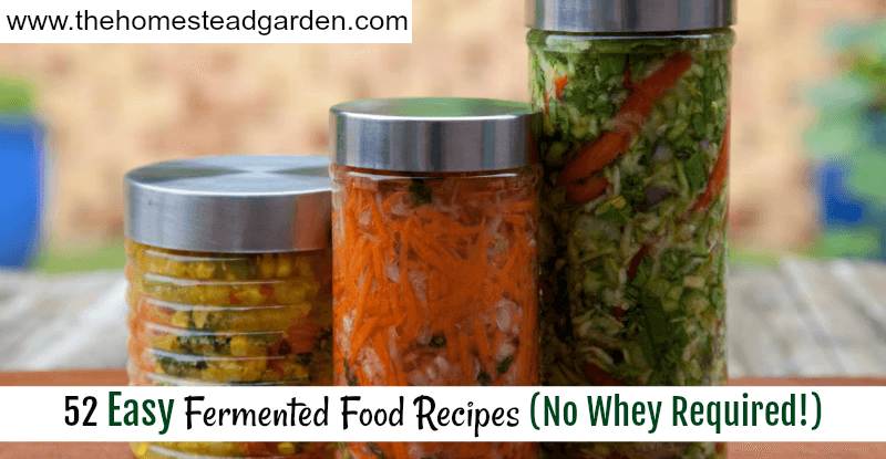 52 Easy Fermented Food Recipes (No Whey Required!)
