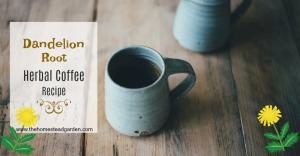 Dandelion Root Herbal Coffee Recipe