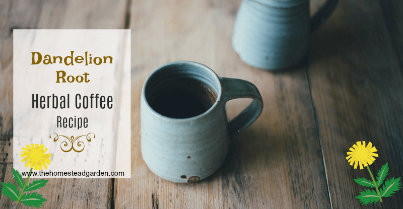 Dandelion Root Herbal Coffee Recipe