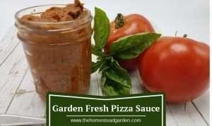 Homemade Garde Fresh Pizza Sauce