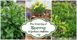 The-Insanity-of-Spring-a-Gardeners-Reflection-fb