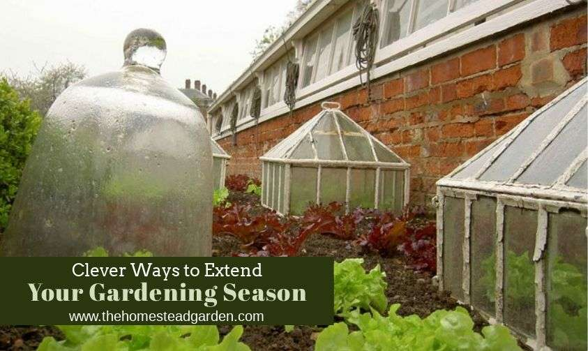 Clever Ways to Extend Your Gardening Season