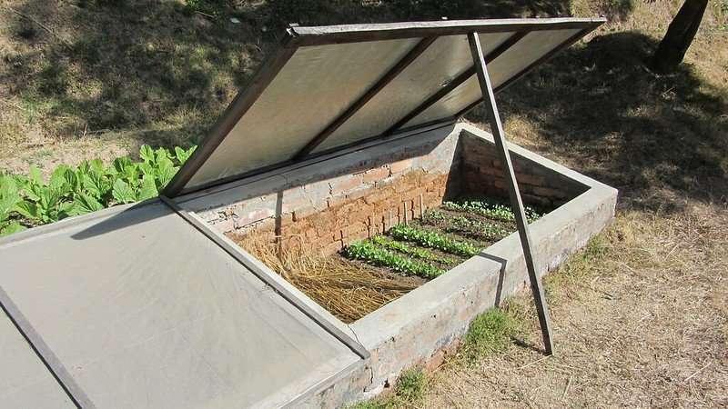 Cold Frames for Extending the Garden Season