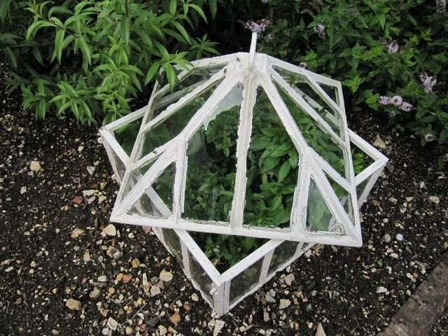 Ways to Extend Your Gardening Season: Garden Cloche