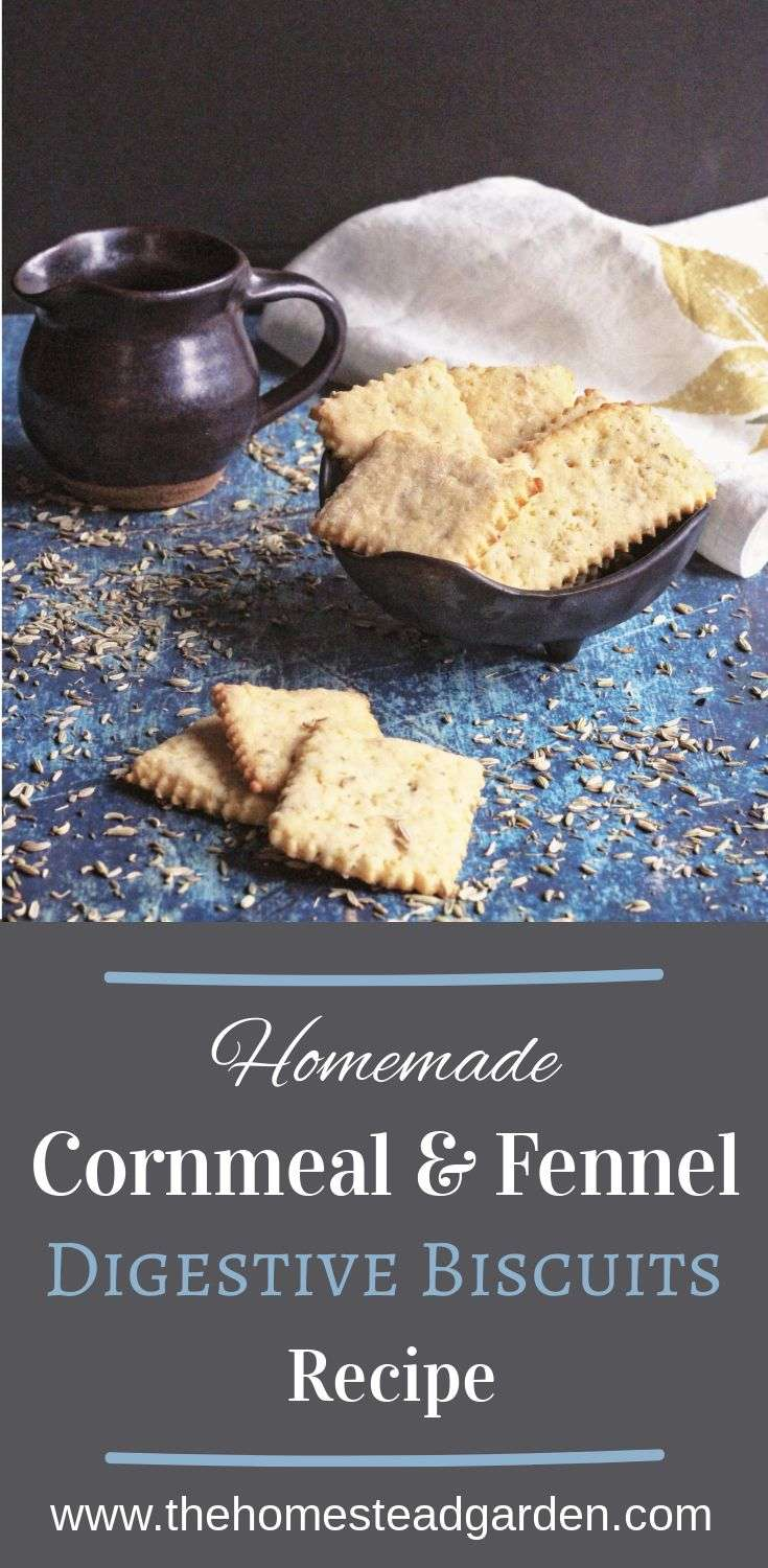 Homemade Cornmeal & Fennel Digestive Biscuits Recipe