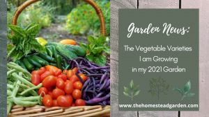 My 2021 Garden Vegetable Varieties