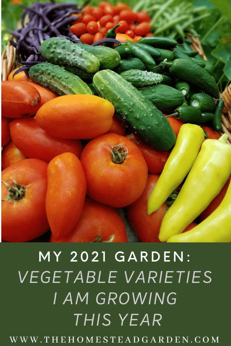 Vegetable Varieties in My Garden in 2021