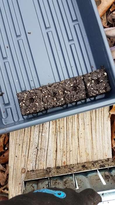 Making Soil Blocks for Seed Starting